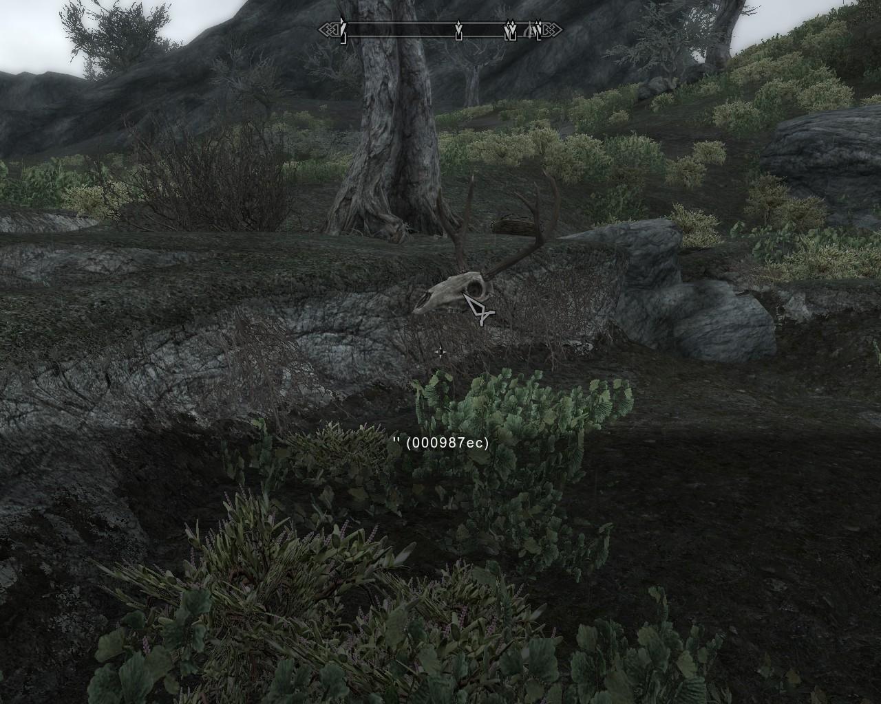 Floating deer skull