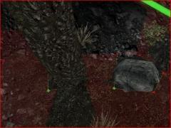 TreeAndNavmeshC19 9