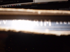 Trying to get an image of the spine