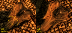 4 SSE Before And After