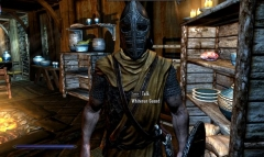 Whiterun Guard in Breezehome!?