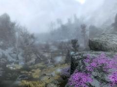 Forgotten Vale 1
