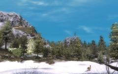 Mountain Summer Day.jpg