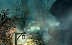 Misty Grove.jpg
