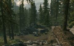 Lush Forest.jpg
