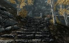 7000 Steps