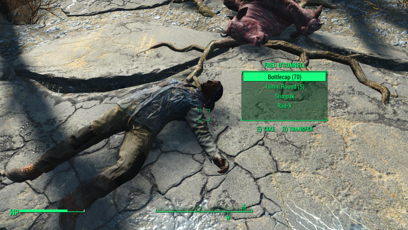 Fallout4_2018_10_30_20_57_59_937.png