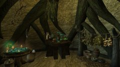 Cocon House Alchemy Corner